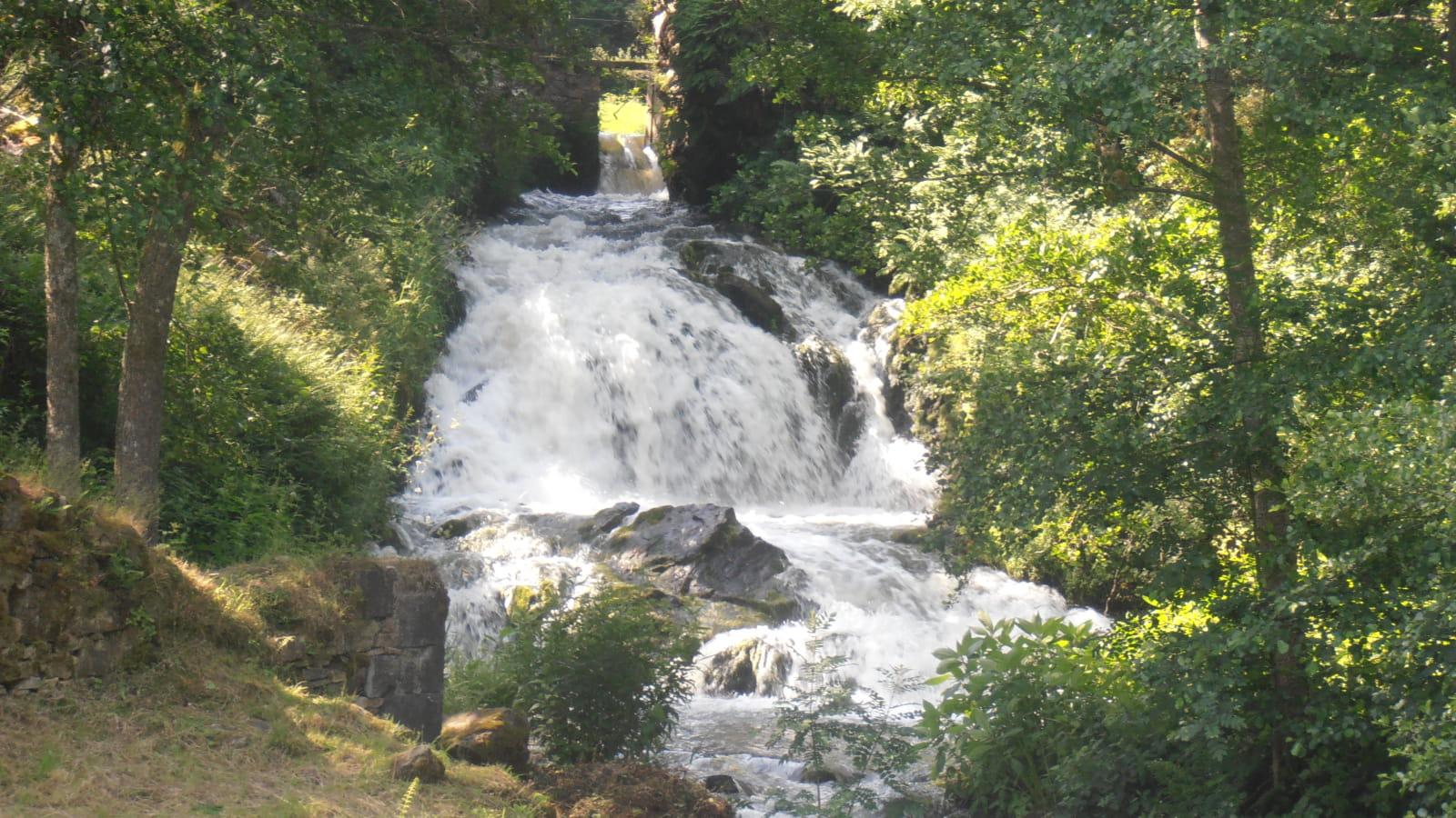 Randonnée dans la forêt Domaniale de la Chartreuse