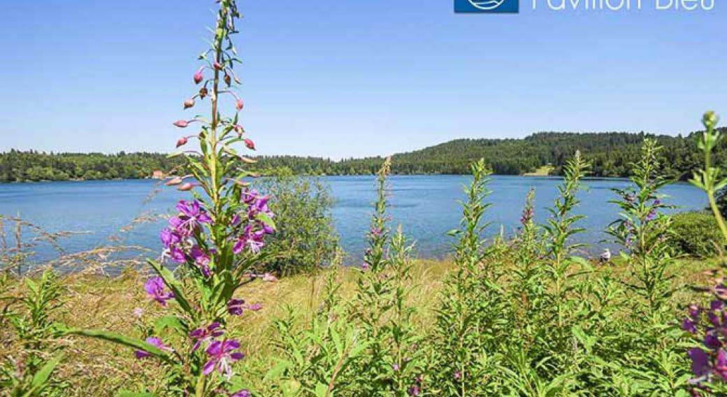 Baignade Surveillée au Lac du Bouchet