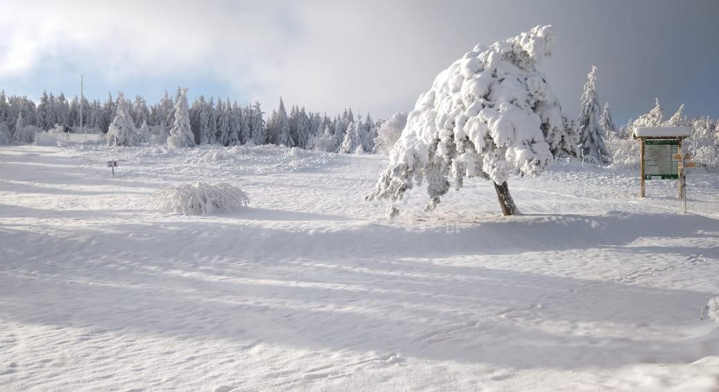 Foyer ski de fond - Salle de la Verrerie
