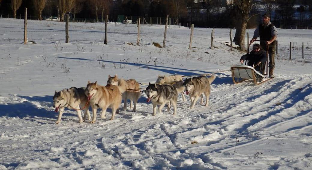 Balades en chiens de traîneaux avec Haut Cantal Evasion